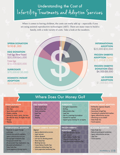 Infographic: Understanding the Cost of Infertility Treatments and Embryo Adoption Services